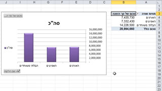 אקסל טבלאות ציר - Excel Pivot Tables